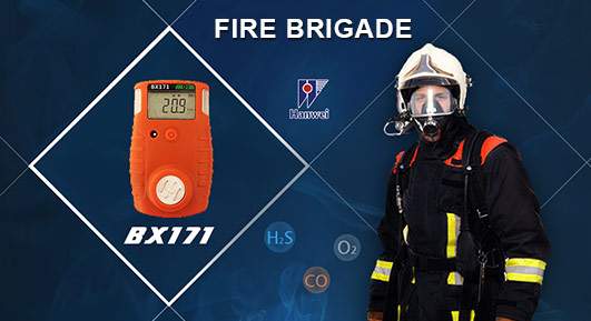 BX171 explosion proof portable single gas detector